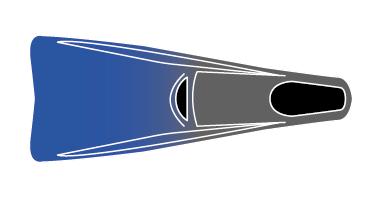 illustration of fins